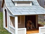 Dog House Plans Home Depot Outstanding Home Depot Dog House Plans Pictures Best