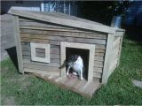 Dog House Project Plans Wooden Pallet Dog House Plans Pallet Wood Projects