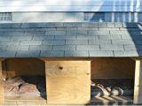 Double Door Dog House Plans Doghouse Door