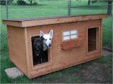 Double Door Dog House Plans Duplex Dog House Home Design Garden Architecture Blog Magazine