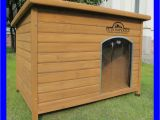 Double Door Dog House Plans Large Dog Kennels Double Door Dog House Plans Large Dog