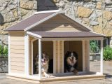 Double Door Dog House Plans Simple Double Dog House Plans