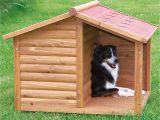 Easy Dog House Plans Large Dogs Diy Dog House for Beginner Ideas
