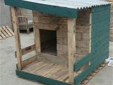 Easy Dog House Plans Large Dogs Dog House Plans