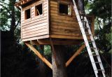 Easy to Build Tree House Plans 9 Diy Tree Houses with Free Plans to Excite Your Kids