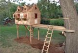 Easy to Build Tree House Plans How to Build A Tree fort How tos Diy