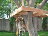 Easy to Build Tree House Plans How to Build A Tree House Plans Best House Design How to