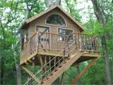 Easy to Build Tree House Plans Pictures Of Tree Houses and Play Houses From Around the