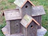 Elaborate Bird House Plans Decorative Bird House 1 Decorative Bird House Plans See