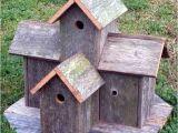 Elaborate Bird House Plans How to Build Bird House Plans Decorative Pdf Plans