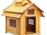 Elevated Dog House Plans Pet Squeak Bird Dog Raised Wooden Dog House Free