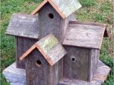 Fancy Bird House Plans How to Build Bird House Plans Decorative Pdf Plans