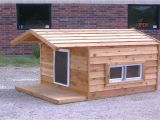 Flat Roof Dog House Plans Free Simple Flat Roof Dog House Plans Youtube