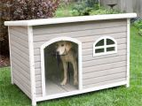 Flat Roof Dog House Plans Free Spotty Xl Insulated Flat Roof Dog House with Heater at
