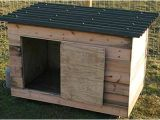 Floating Duck House Plans Instructions A Cheap Chicken or Duck House