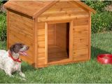 Free Dog House Plans for 2 Dogs 10 Free Dog House Plans Icreatived