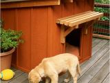 Free Dog House Plans for 2 Dogs 10 Free Dog House Plans Woodworking Crazy