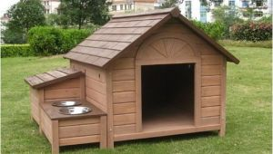 Free Large Breed Dog House Plans Large Breed Dog House Dogs Breed Sierramichelsslettvet