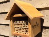 Free Mason Bee House Plans Mason Bee House Plans Beautiful Montana Wildlife Gardener