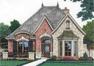 French Luxury Home Plan Luxury French Country House Plans Picture Cottage House