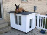 German Shepherd Dog House Plans German Shepherd Insulated Dog House Plans