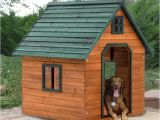 Giant Dog House Plans 1000 Ideas About Extra Large Dog Kennel On Pinterest