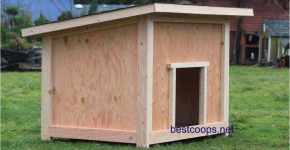 Giant Dog House Plans Large Dog House Plan 2 9 99 Picclick