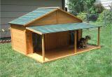 Giant Dog House Plans Your Big Friend Needs A Large Dog House Mybktouch Com
