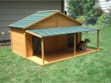 Giant Dog House Plans Your Big Friend Needs A Large Dog House Mybktouch Com
