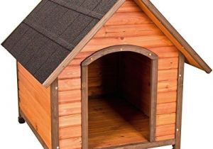 Great Dane Dog House Plans Beautiful Great Dane Dog House Plans New Home Plans Design