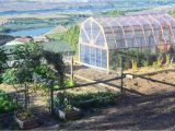 Green House Plans with Photos How to Build A Greenhouse