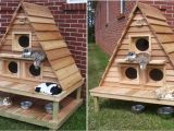 Heated Cat House Plans Insulated Outdoor Cat Houses Multiple Outdoor Cat House