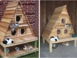 Heated Cat House Plans Wood Work Heated Cat House Plans Pdf Plans