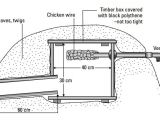 Hedgehog Home Plans Preparing to Make A Hedge Hog House and Taking Care the
