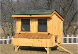 Hen House Building Plans Chicken Coop Ideas Designs and Layouts for Your Backyard