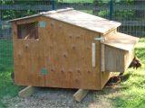 Hen House Design Plans Poultry House Construction A Review
