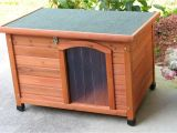 Hinged Roof Dog House Plans Dog House Plans with Hinged Roof Inspirational Dog House