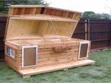 Hinged Roof Dog House Plans Dog House Plans with Hinged Roof Youtube