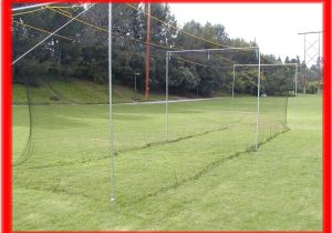 Home Batting Cage Plans Backyard Batting Cages Bestsciaticatreatments Com