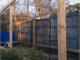 Home Batting Cage Plans Homemade Batting Cage Plans Homemade Ftempo