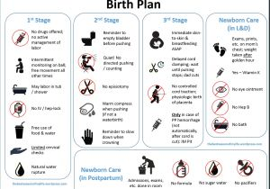 Home Birth Birth Plan A Downloadable Visual Birth Plan the Best Season Of My Life