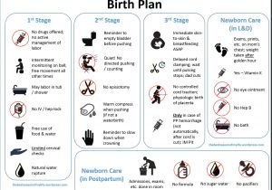 Home Birth Plan A Downloadable Visual Birth Plan the Best Season Of My Life