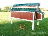 Home Depot Chicken Coop Plans Diy Chicken Coop 5 Ways to Build Yours Bob Vila