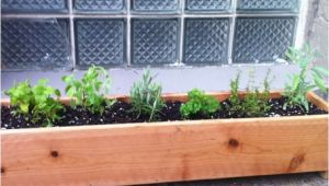Home Depot Planter Box Plans Cedar Planter Box Home Depot Woodworking Projects Plans