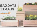 Home Depot Vertical Garden Plans Vertical Garden In Front Of the Bedroom Chocoaddictscom