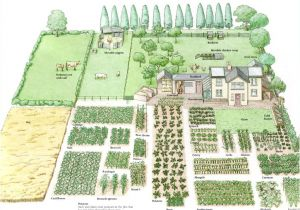 Home Garden Plan Enjoy This Beautiful Day Garden Planning