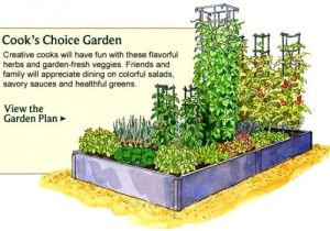 Home Garden Plan Vegetable Garden Design Examples Perfect Home and Garden