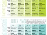Home Juice Cleanse Plan Best 25 2 Day Cleanse Ideas On Pinterest Detox Cleanse