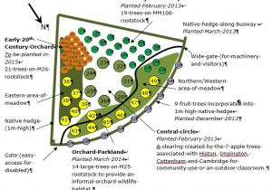 Home orchard Plan orchard Planting Map