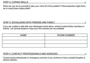 Home Safety Plan Template Safety Plan Template Cyberuse